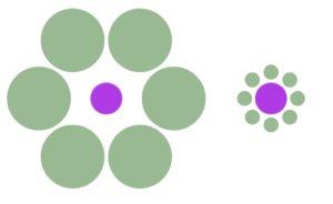 ebbinghaus illusion in psychology